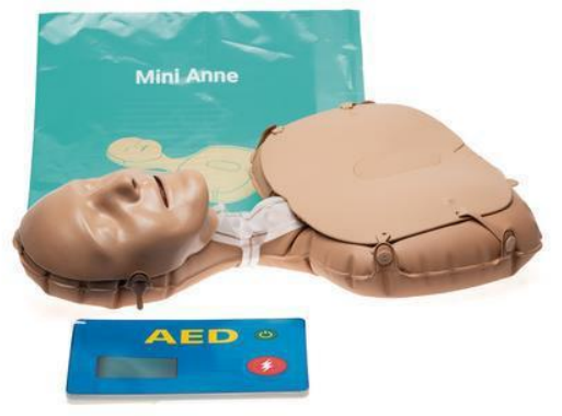 Laerdal Mini Anne Global € 53.24